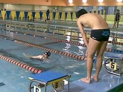 水泳競技会のようす
