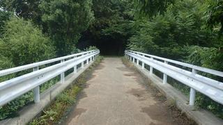 橋(資料画像)