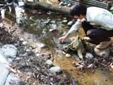 ほたる池(ファミリーパーク)