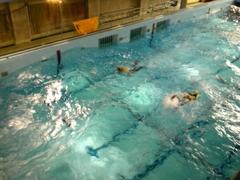 訓練プール
